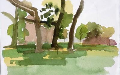 Tree Trinity at Fort Hill Parkk